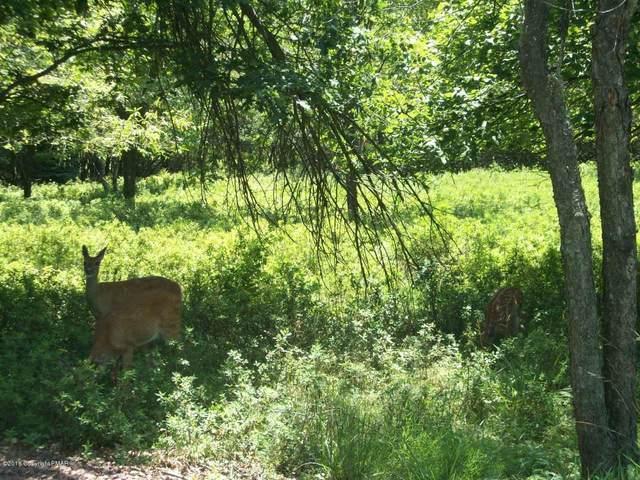 Moccasin Trl, Pocono Lake, PA 18347 (MLS #PM-77826) :: Keller Williams Real Estate