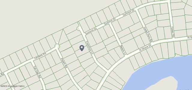 141 Chestnut Ln, Albrightsville, PA 18210 (MLS #PM-78271) :: RE/MAX of the Poconos