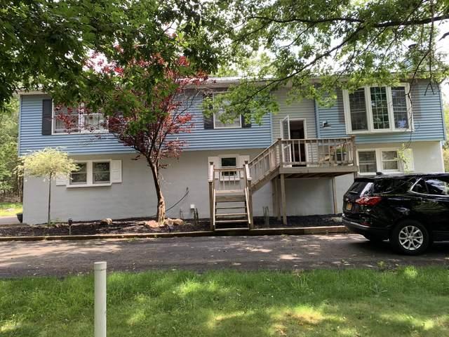 287 Scenic Dr, Albrightsville, PA 18210 (MLS #PM-79005) :: Keller Williams Real Estate