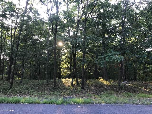165 Gold Finch Rd, Bushkill, PA 18324 (MLS #PM-79869) :: Kelly Realty Group