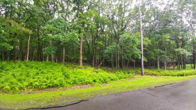 4 Maple Rd, Blakeslee, PA 18610 (MLS #PM-80682) :: RE/MAX of the Poconos