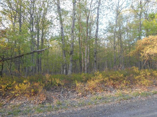 Lot 920 Forest Dr, Canadensis, PA 18325 (MLS #PM-81262) :: RE/MAX of the Poconos