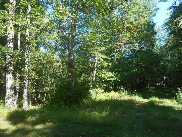 Lot 216 Cedar Ln, Canadensis, PA 18325 (MLS #PM-81492) :: Kelly Realty Group
