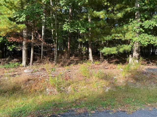 Lot 10A Block 91 Section 12, Dingmans Ferry, PA 12864 (MLS #PM-81689) :: RE/MAX of the Poconos
