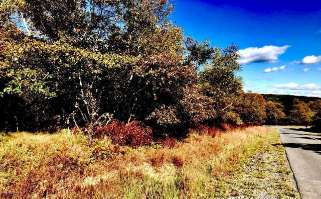 163 Geiger Lane & Patten Cir, Albrightsville, PA 18210 (MLS #PM-82100) :: RE/MAX of the Poconos