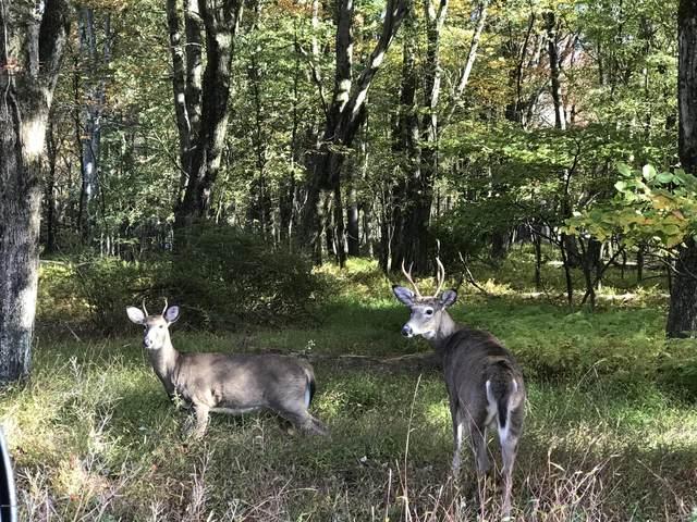 Lot A14 Turkey Path Trail, White Haven, PA 18661 (MLS #PM-82191) :: Kelly Realty Group