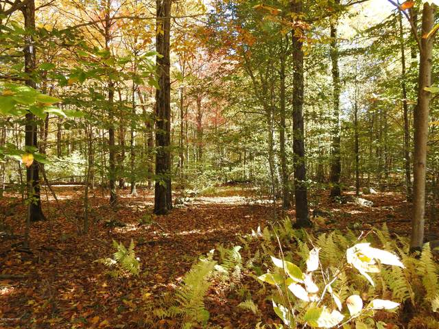 Antler Dr. Lot #20, Canadensis, PA 18325 (MLS #PM-82207) :: RE/MAX of the Poconos