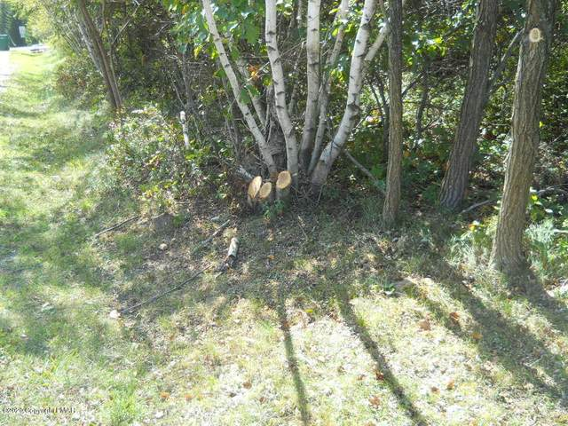 Lot 286 Sunset Dr, Jim Thorpe, PA 18229 (MLS #PM-82446) :: Kelly Realty Group