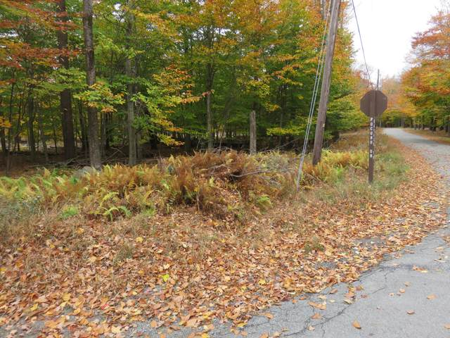 Lot 258 Pocono Drive, Gouldsboro, PA 18424 (MLS #PM-82454) :: RE/MAX of the Poconos