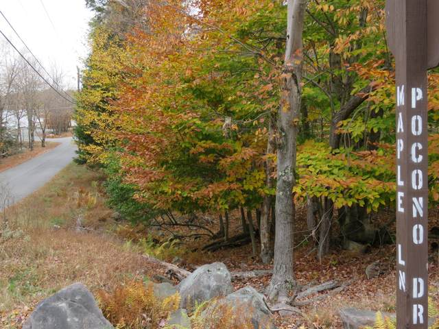Lot 129 Pocono Drive, Gouldsboro, PA 18424 (MLS #PM-82456) :: RE/MAX of the Poconos