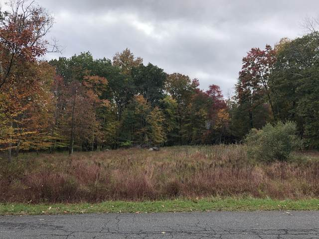 Lot 25 Depue Ln, Stroudsburg, PA 18360 (MLS #PM-82505) :: Kelly Realty Group