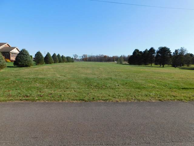 212 Blue Jay Dr, Jim Thorpe, PA 18229 (MLS #PM-83122) :: Kelly Realty Group