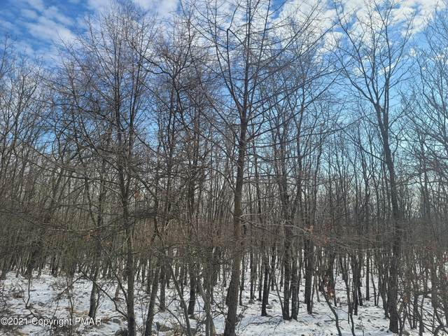 Scenic Drive, Effort, PA 18330 (MLS #PM-84267) :: RE/MAX of the Poconos