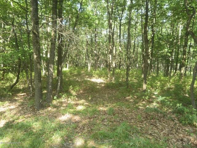Lot 24 Stone Ridge Rd, Albrightsville, PA 18210 (MLS #PM-84768) :: RE/MAX of the Poconos