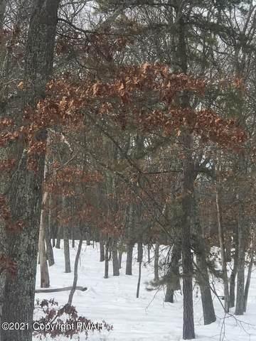 Lot 203 Eagle Path, Bushkill, PA 12864 (MLS #PM-85154) :: Kelly Realty Group