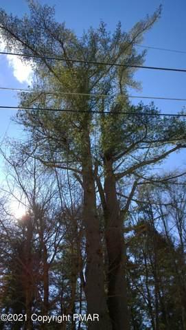 Lot 675 Raccoon Ct, Bushkill, PA 18324 (MLS #PM-85411) :: RE/MAX of the Poconos