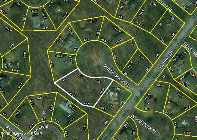 4202 White Goose Street, Tobyhanna, PA 18466 (#PM-85442) :: Jason Freeby Group at Keller Williams Real Estate