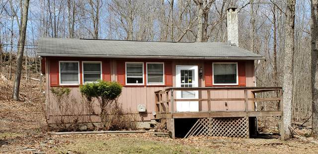 3645 Sequoia Dr, East Stroudsburg, PA 18302 (MLS #PM-86151) :: Kelly Realty Group