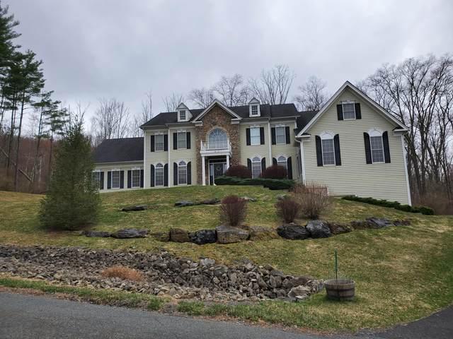 113 Rising Meadow Way, East Stroudsburg, PA 18302 (#PM-86200) :: Jason Freeby Group at Keller Williams Real Estate