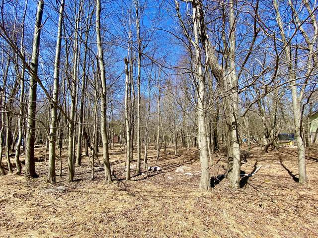 Schochs Mill Rd Lot 140, Blakeslee, PA 18610 (MLS #PM-86388) :: Kelly Realty Group