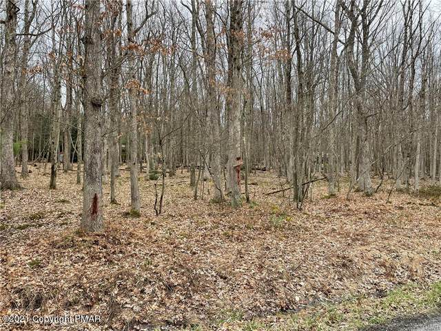 Towamensing Trl, Jim Thorpe, PA 18229 (#PM-86558) :: Jason Freeby Group at Keller Williams Real Estate
