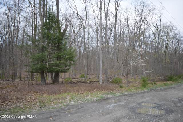 Norman Dr, East Stroudsburg, PA 18302 (MLS #PM-86781) :: Kelly Realty Group