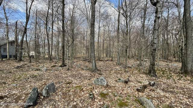 Address Not Published, Gouldsboro, PA 18424 (MLS #PM-86792) :: Smart Way America Realty
