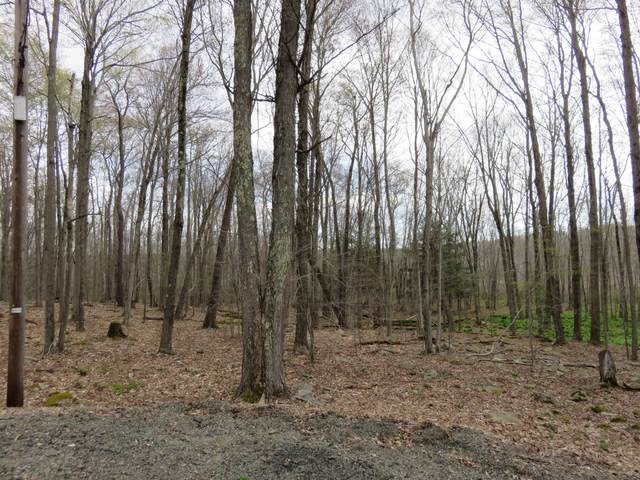 Lot 2615-W Mallard Court, Gouldsboro, PA 18424 (#PM-87126) :: Jason Freeby Group at Keller Williams Real Estate