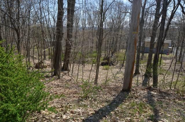 Lot 88  Pheasant Run, Bushkill, PA 18324 (MLS #PM-87197) :: RE/MAX of the Poconos