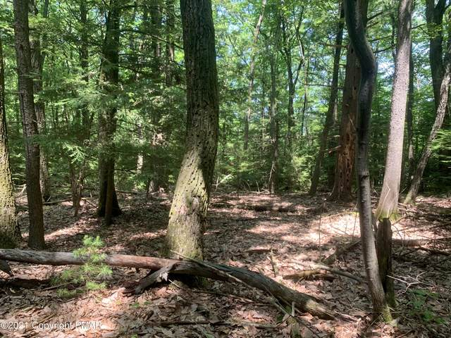 Deanne Ct, Brodheadsville, PA 18322 (MLS #PM-88417) :: RE/MAX of the Poconos