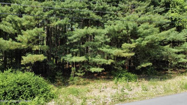 795 Long Road, Buck Hill Falls, PA 18323 (MLS #PM-88619) :: Smart Way America Realty