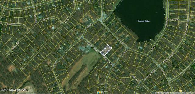 703 Hillside Ter, Pocono Lake, PA 18347 (MLS #PM-89002) :: Kelly Realty Group