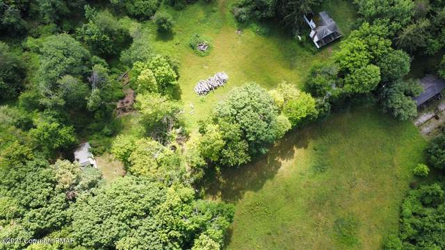 299 Long Rd, Canadensis, PA 18325 (MLS #PM-89582) :: RE/MAX of the Poconos