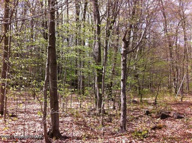 1814 Elk Run Rd, Pocono Lake, PA 18347 (MLS #PM-89892) :: Kelly Realty Group