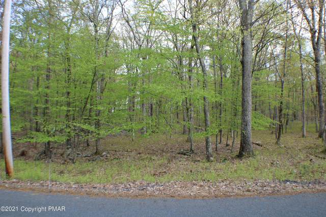 196-197 Port Dr, Dingmans Ferry, PA 18328 (MLS #PM-89916) :: Kelly Realty Group