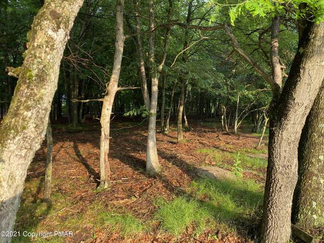 Lot 501 Beaver Dr, Albrightsville, PA 18210 (MLS #PM-90040) :: Kelly Realty Group