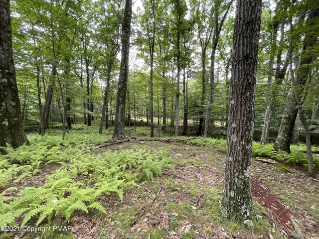 Lot 63 Skyline Dr, Canadensis, PA 18325 (MLS #PM-90858) :: Smart Way America Realty