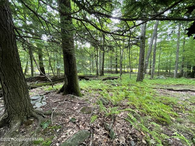 Lot 64 Skyline Dr, Canadensis, PA 18325 (MLS #PM-90863) :: Smart Way America Realty