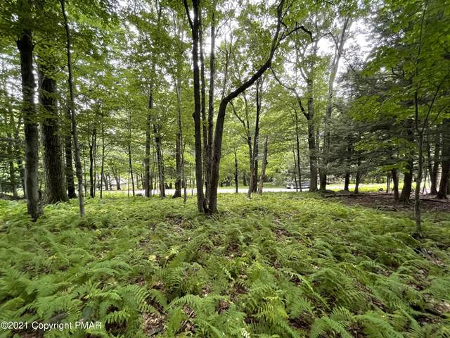 Lot 66 Skyline Dr, Canadensis, PA 18325 (MLS #PM-90883) :: Smart Way America Realty