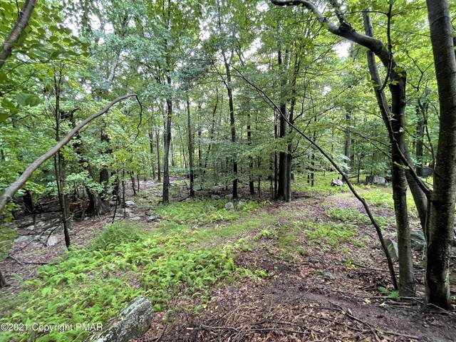Lot G-120 Bass Ct, Canadensis, PA 18325 (MLS #PM-91192) :: Smart Way America Realty