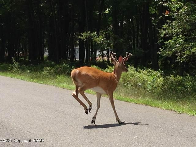 6 Anna Rd, Pocono Lake, PA 18610 (MLS #PM-91339) :: Smart Way America Realty