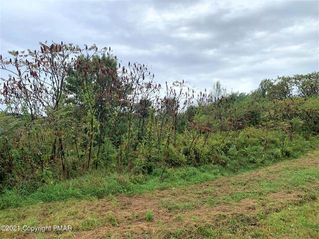 Creekview Road & Buttercup Way, Kunkletown, PA 18058 (MLS #PM-91696) :: Smart Way America Realty