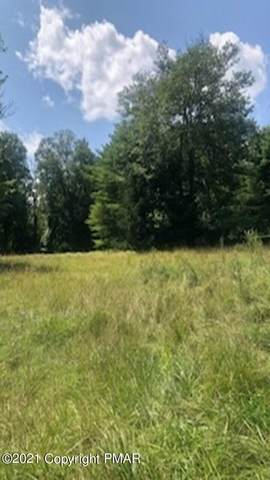 Moss Dr, Swiftwater, PA 18370 (MLS #PM-91921) :: Kelly Realty Group