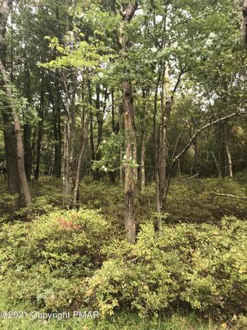 Forest Hill Dr 40, Blakeslee, PA 18610 (MLS #PM-91998) :: Smart Way America Realty