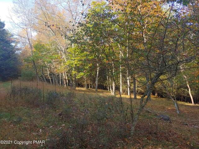 Pine Tree Rd, Cresco, PA 18326 (MLS #PM-92110) :: Kelly Realty Group