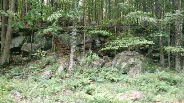 Lot 144C Sheridan Rd, Lakeville, PA 18428 (MLS #PM-39940) :: RE/MAX of the Poconos