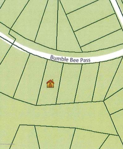 306 Bumble Bee Pass, Bushkill, PA 18324 (MLS #PM-40165) :: Keller Williams Real Estate