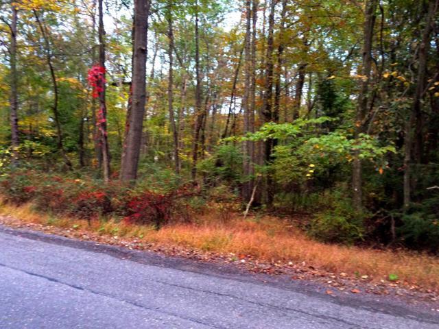 Lot 19 Lake Drive, Nesquehoning, PA 18240 (MLS #PM-41798) :: Keller Williams Real Estate