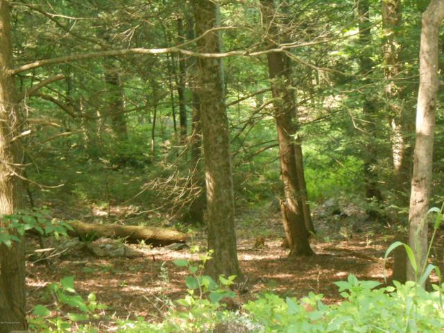 52 Logger Road, Canadensis, PA 18325 (MLS #PM-50624) :: RE/MAX of the Poconos