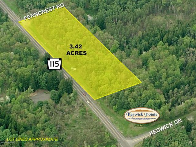 Route 115, Blakeslee, PA 18610 (MLS #PM-53378) :: RE/MAX of the Poconos